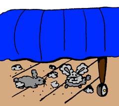 Dust-Bunnies