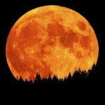poem about the moon